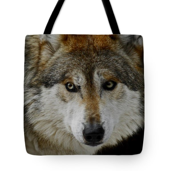 Caution Upclose Tote Bag by Ernie Echols