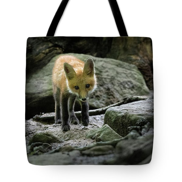 Cautiously Looking For Danger Tote Bag