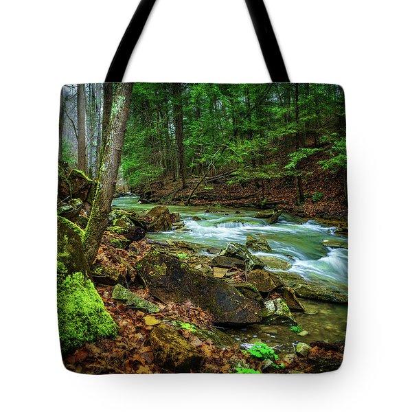 Cave Branch #15 Tote Bag