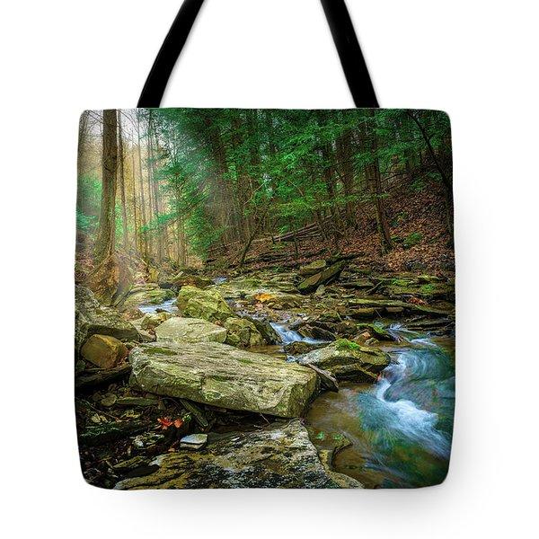 Cave Branch #9 Tote Bag