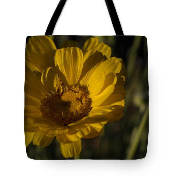 Tote Bag featuring the photograph Cave Creek Beauty And Shadows by Carolina Liechtenstein