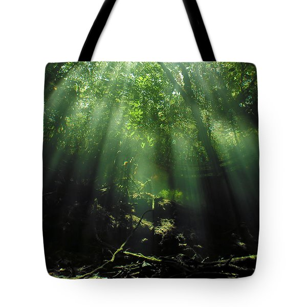 Cave Diving In Mexico Tote Bag