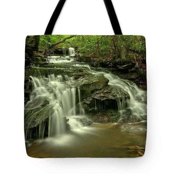 Cave Falls At Cole Run Tote Bag