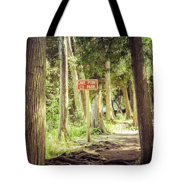 Tote Bag featuring the photograph Cave Point Trails by Joel Witmeyer