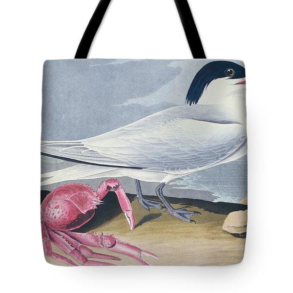 Cayenne Tern Tote Bag by John James Audubon