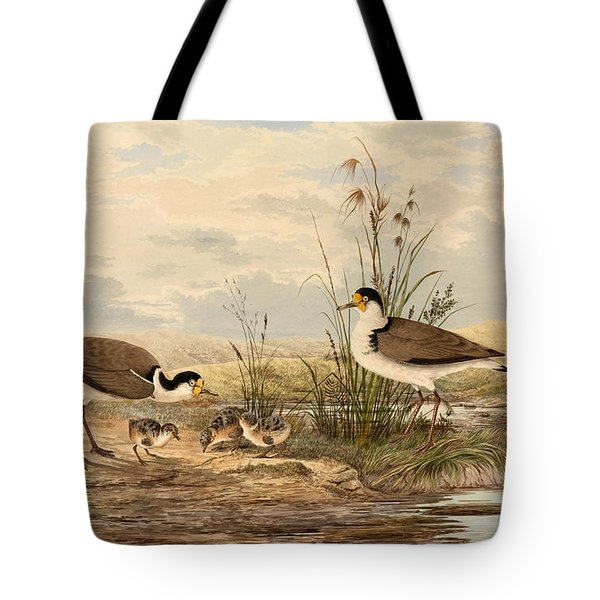Cayley Masked Lapwing. Vanellus Miles Tote Bag