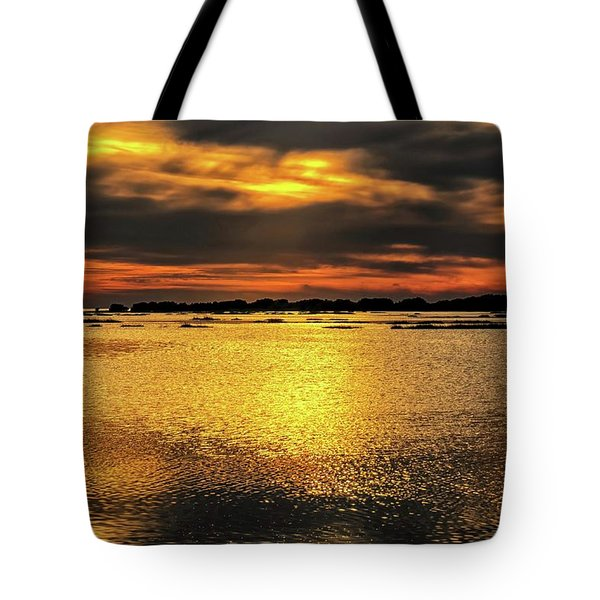 Tote Bag featuring the photograph Ceader Key Florida  by Louis Ferreira