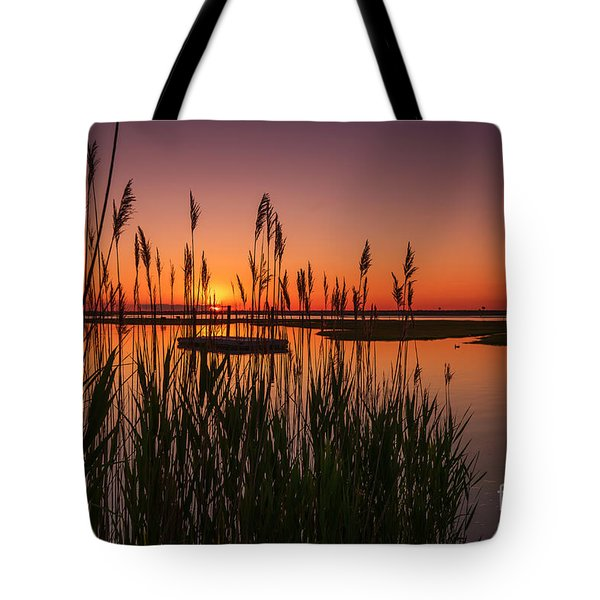Cedar Beach Sunset In The Reeds Tote Bag