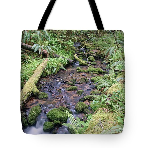 Tote Bag featuring the photograph Cedar Creek Near Cottage Grove Lake #1 by Ben Upham III