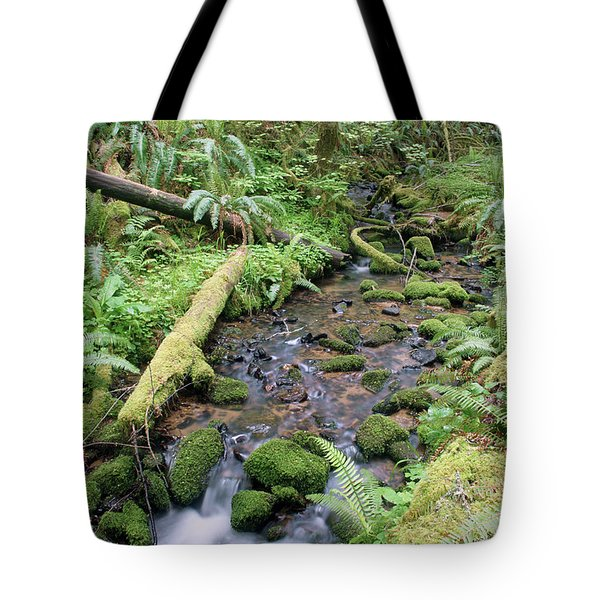 Tote Bag featuring the photograph Cedar Creek Near Cottage Grove Lake #2 by Ben Upham III