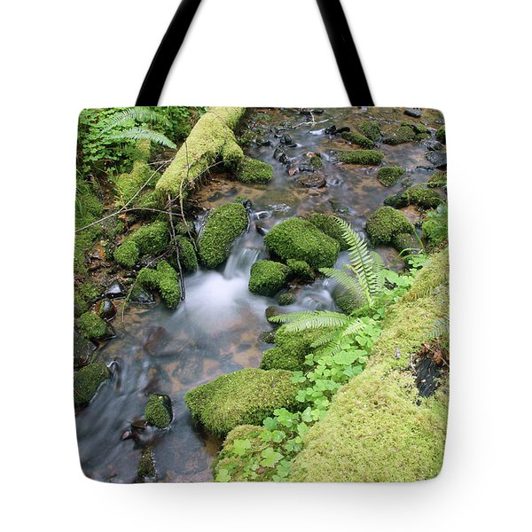 Tote Bag featuring the photograph Cedar Creek Near Cottage Grove Lake #3 by Ben Upham III