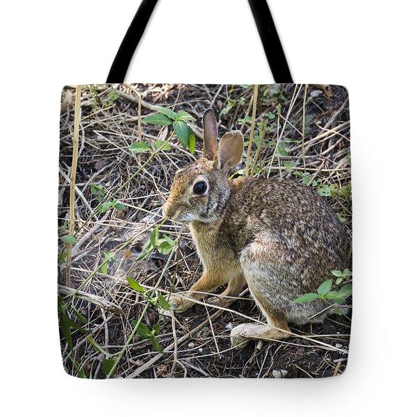 Cedar Hill Bunny Tote Bag