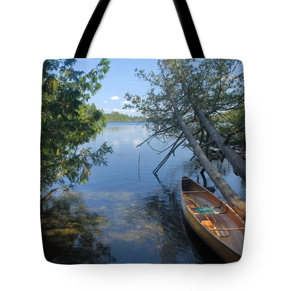 Cedar Strip Canoe And Cedars At Hanson Lake Tote Bag by Larry Ricker