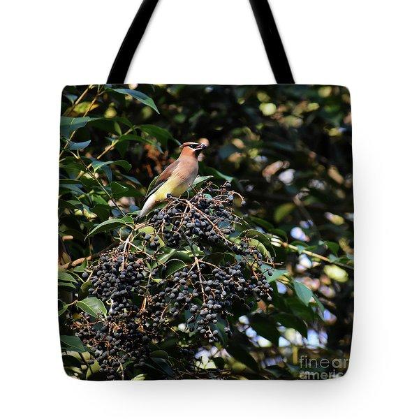 Cedar Wax Wing Tote Bag