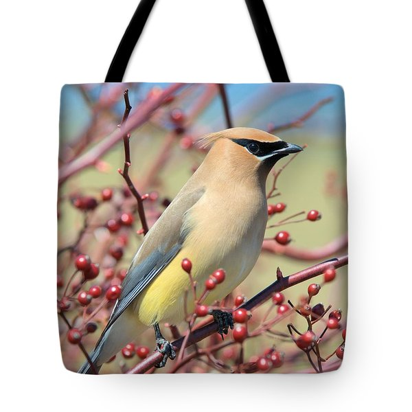 Tote Bag featuring the photograph Cedar Waxwing by Debbie Stahre
