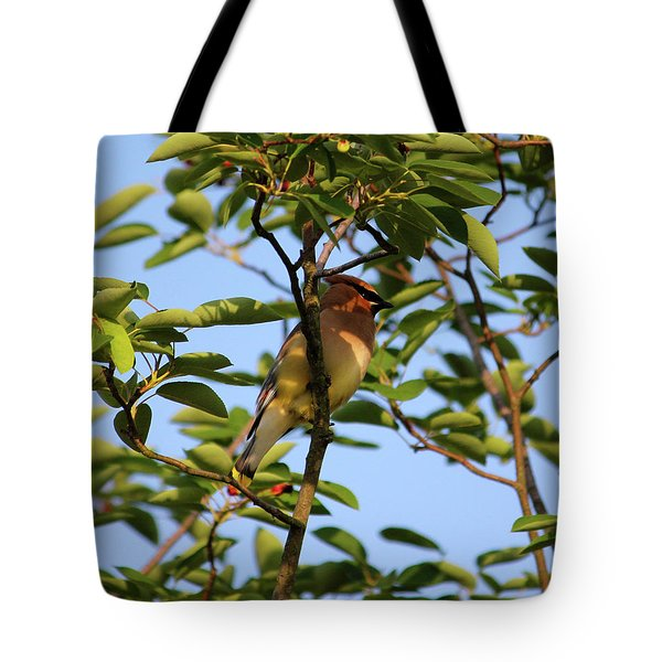 Cedar Waxwing Tote Bag by Mark A Brown