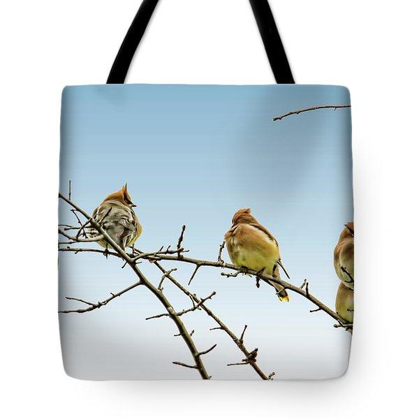 Cedar Waxwings Tote Bag by Geraldine Scull