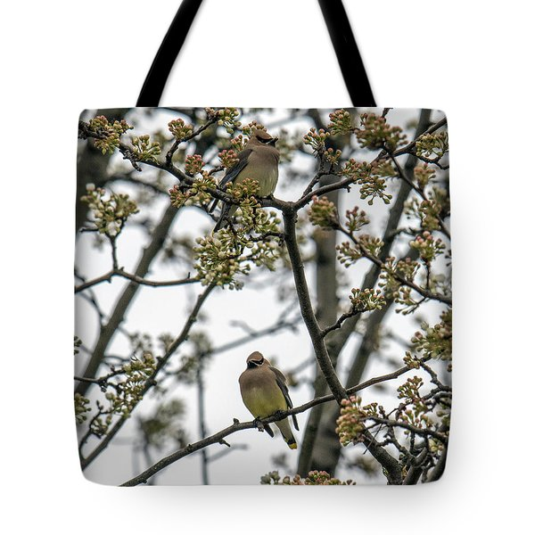 Cedar Waxwings In A Blossoming Tree Tote Bag