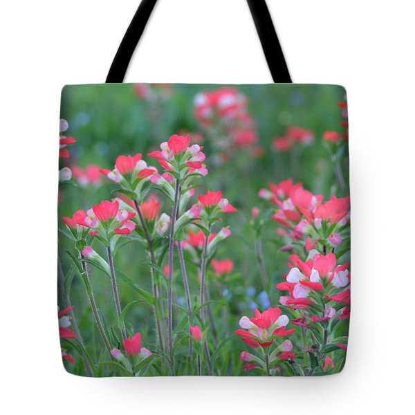 Celebration Of Paintbrushes Tote Bag