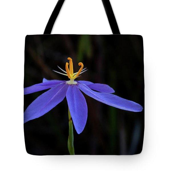 Celestial Lily Tote Bag