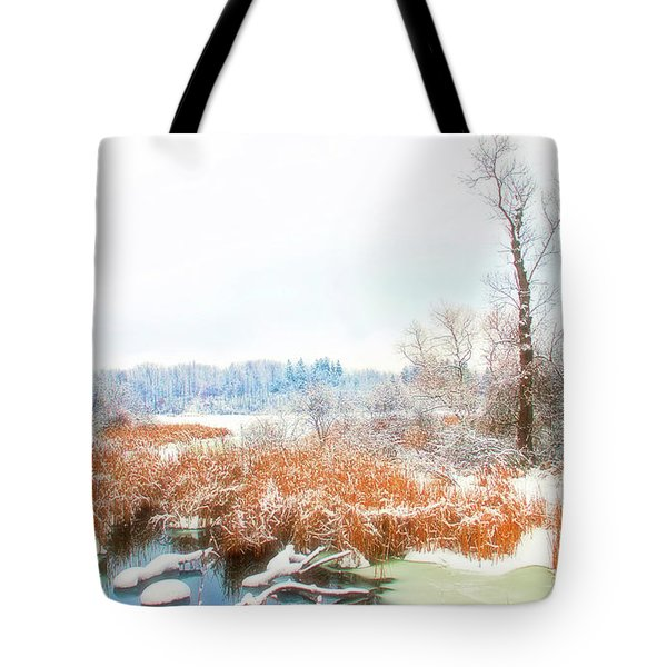 Tote Bag featuring the photograph Celestial Skies Winters Glory by Aimee L Maher Photography and Art Visit ALMGallerydotcom