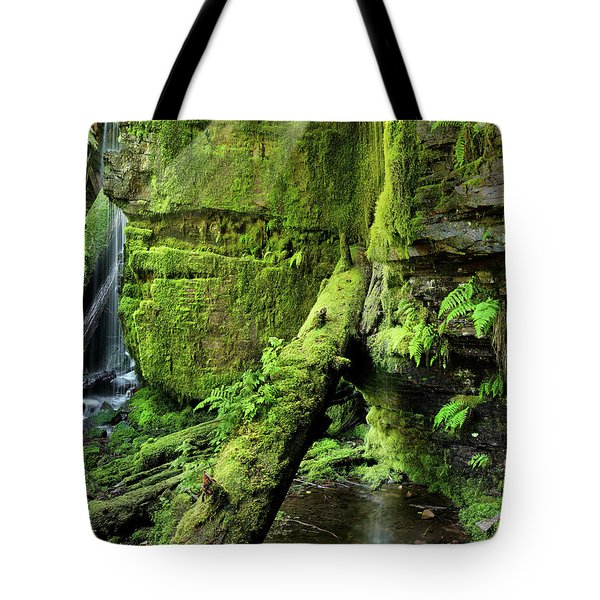 Centennial Falls Mist Tote Bag by Leland D Howard
