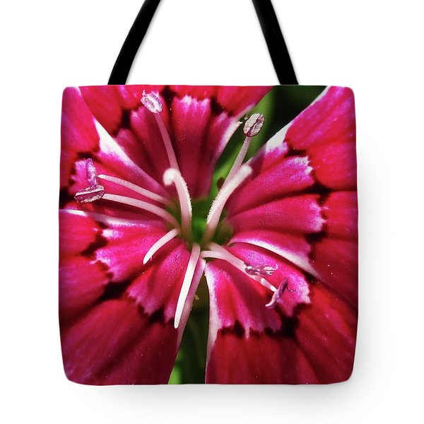 Center Of A Sweet William Tote Bag by Mary Ellen Frazee