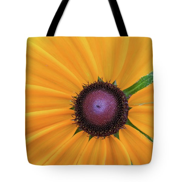 Tote Bag featuring the photograph Center Stage by David Coblitz