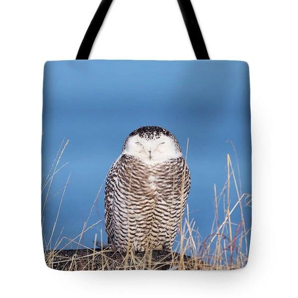 Centered Snowy Owl Tote Bag