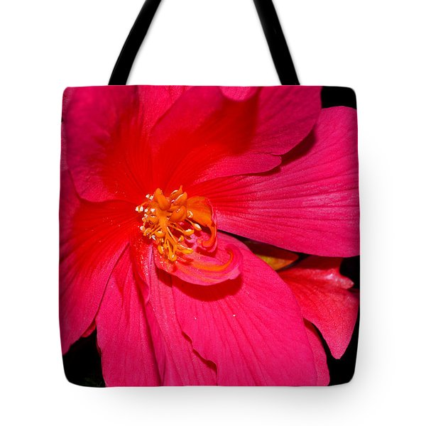 Tote Bag featuring the photograph Centerpiece - Pink Begonia 007 by George Bostian