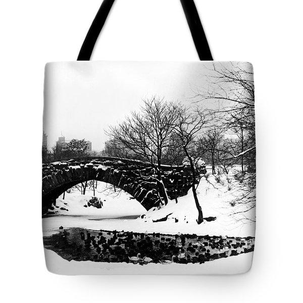 Central Park Duck Pond Tote Bag
