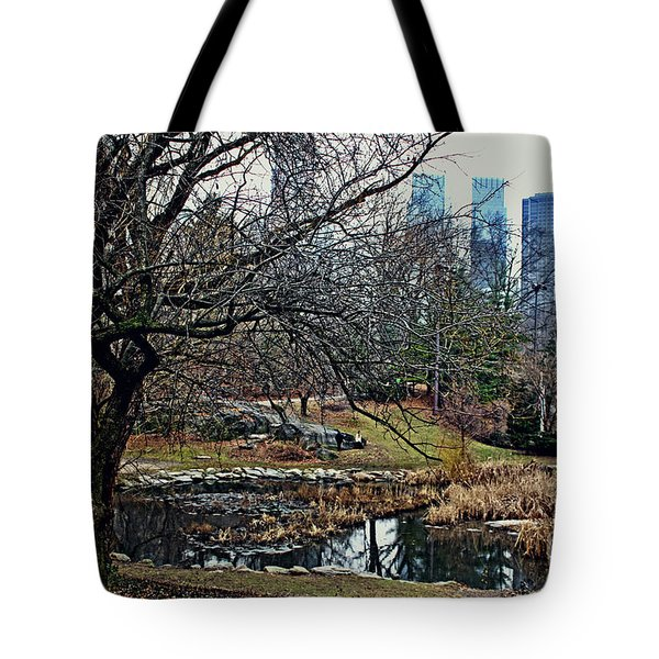 Central Park In January Tote Bag