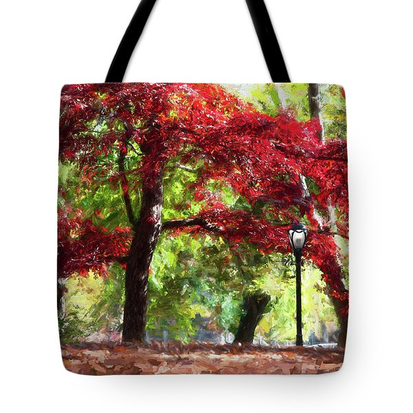 Central Park In Manhattan Tote Bag