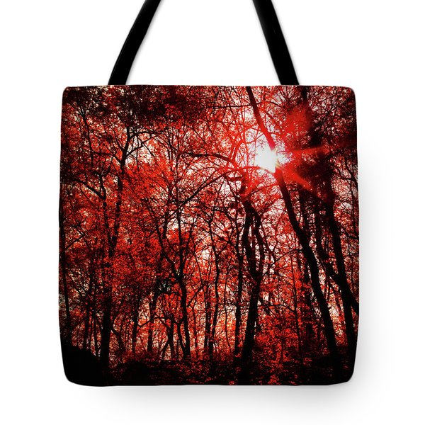 Tote Bag featuring the photograph Central Park  by Lucian Capellaro