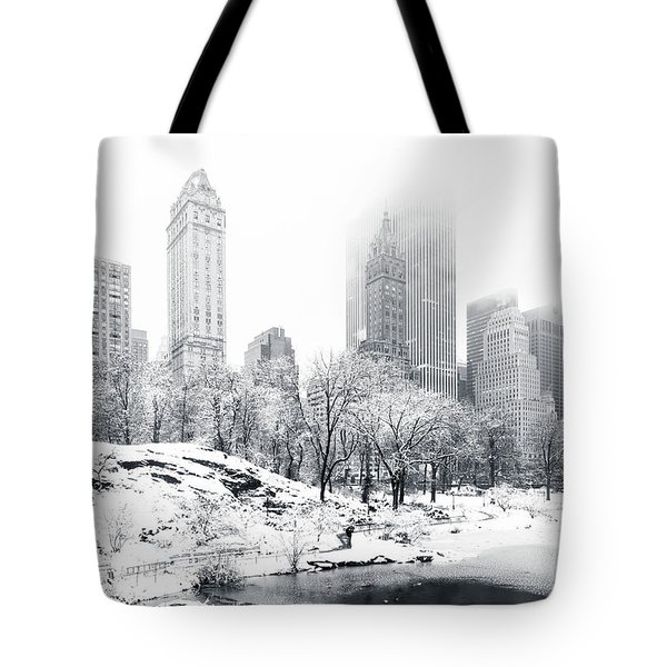 Tote Bag featuring the photograph Central Park by Mihai Andritoiu