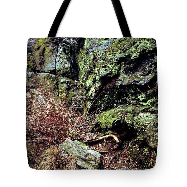 Central Park Rock Formation Tote Bag