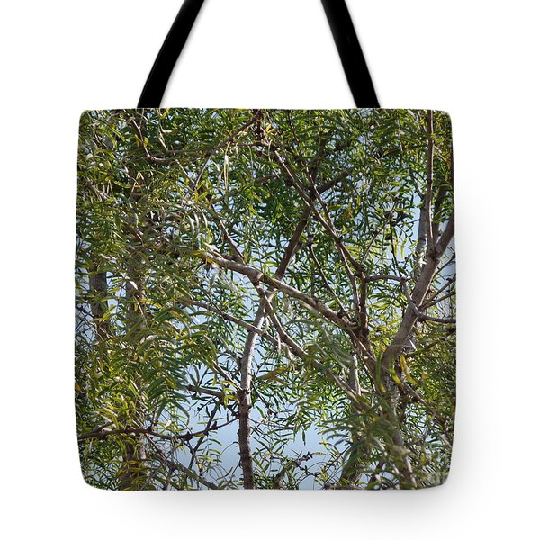 Tote Bag featuring the photograph Central Texas Sky View Through Mesquite Trees by Ray Shrewsberry