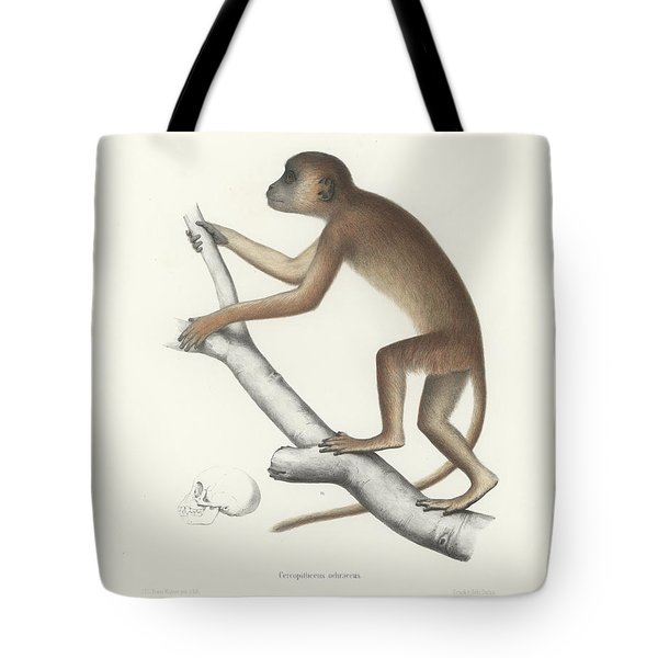 Central Yellow Baboon, Papio C. Cynocephalus Tote Bag