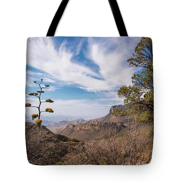 Tote Bag featuring the photograph Century Plant Overlook At Big Bend by Lon Dittrick