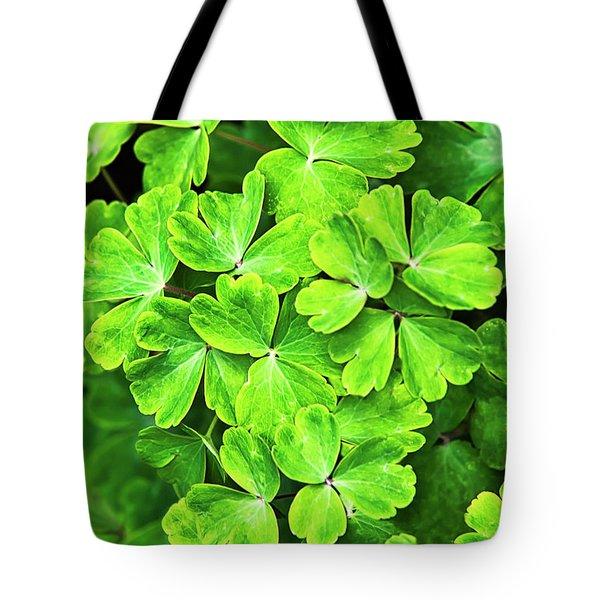 Certain Green Tote Bag by Christina Rollo