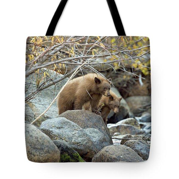 Cub Row Tote Bag