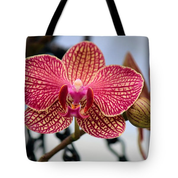 Tote Bag featuring the photograph Chained Prettiness by Silke Brubaker