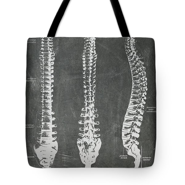 Chalkboard Anatomical Spines Tote Bag