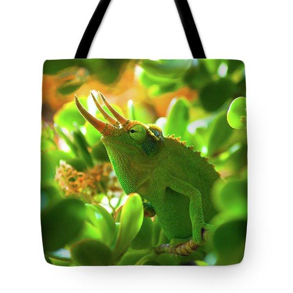 Chameleon King Tote Bag