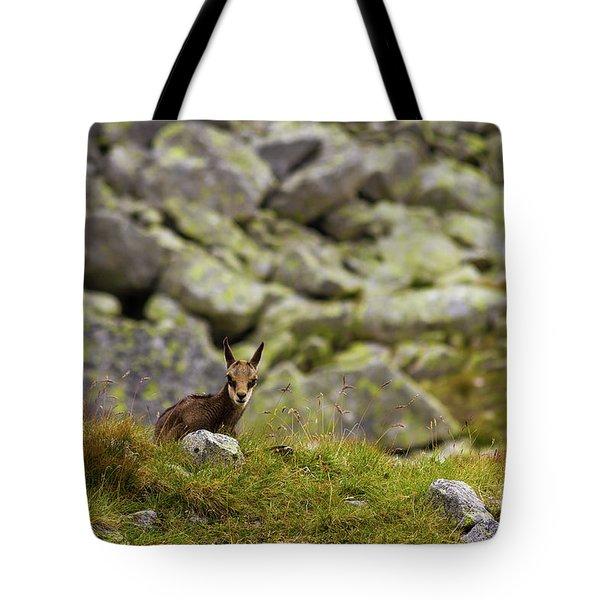 Chamois Calf Tote Bag