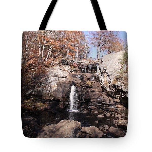 Champman Falls 11/7/16 Tote Bag