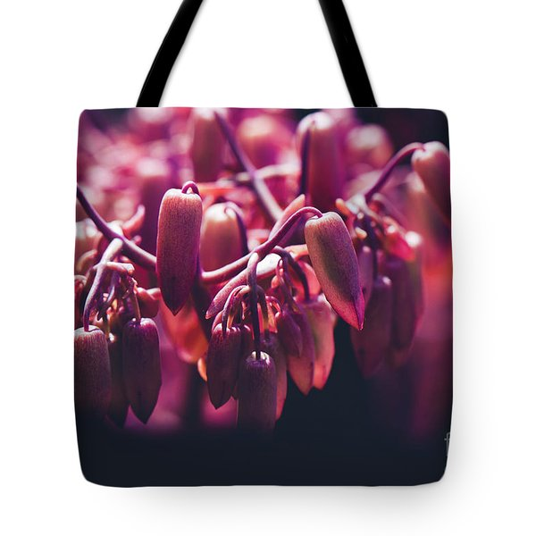 Chandelier Plant Kalanchoe - A Solitary Morning Tote Bag by Sharon Mau