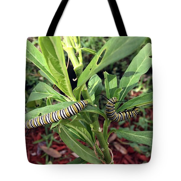 Change Is Coming Tote Bag by Audrey Robillard