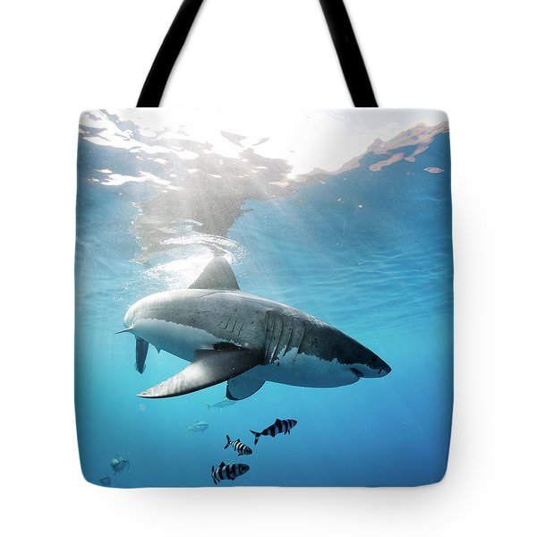 Change Of Direction Tote Bag by Shane Linke