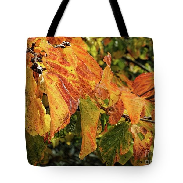 Tote Bag featuring the photograph Changes by Peggy Hughes